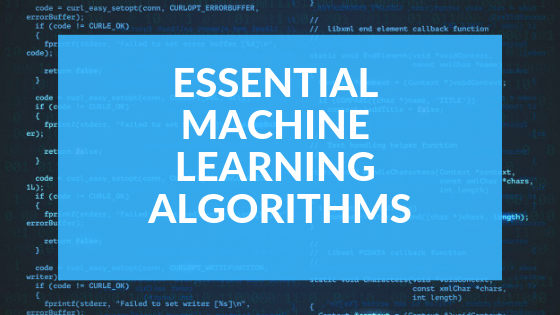 Essential Machine Learning Algorithms